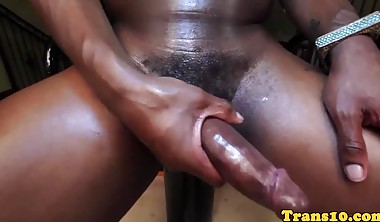 Bigtitted black shemale tugging her dick